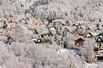 Cottages in Forest covered with snow